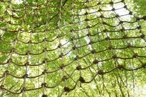 Adventure Park Nets