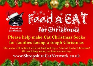 Fundraising – Feed a Cat for Christmas