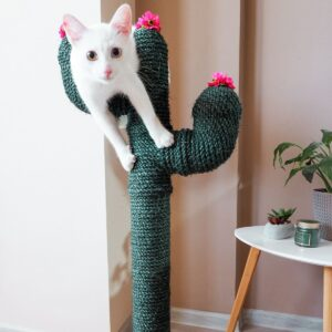 DIY Cactus Cat Scratcher
